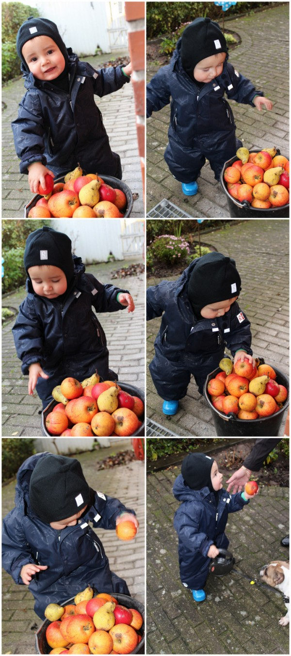 Cookie æbletyv