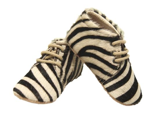Petit Nord zebra